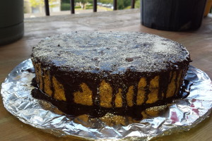 cake with a flat surface (8)